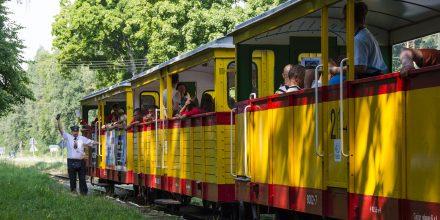 Kierownik pociągu podaje sygnał odjazd dla pociągu do Sztutowa na przystanku Jantar Leśniczówka. Fot. Przemysław Strzyżewski.